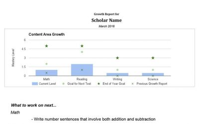 Chart showing mastery level of a particular student across subjects